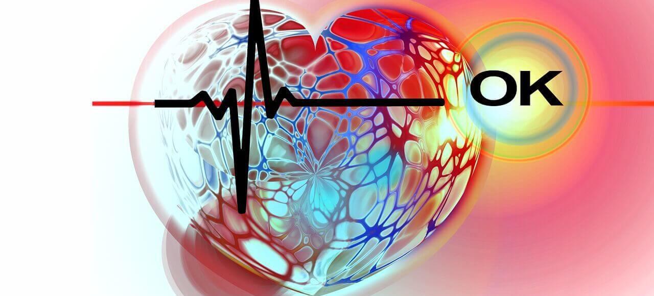 Frequência cardíaca: Como Medir com e sem Frequencímetro